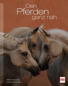 Den Pferden ganz nah