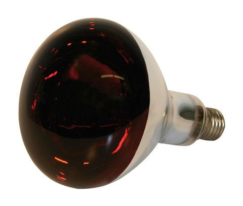 Hartglas-Infrarotlampe rot, 150 Watt