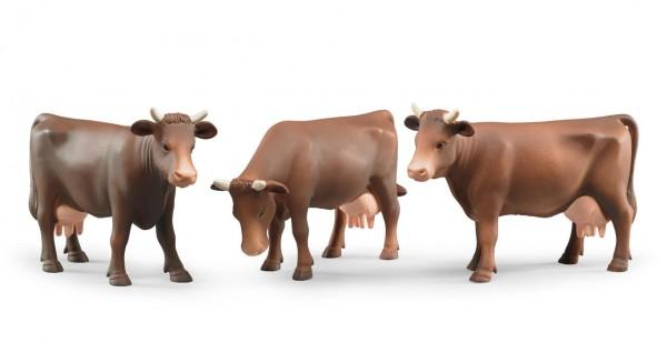 Bruder Kuh mit verschiedenen Kopfstellungen